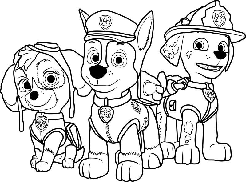 Psi Patrol Kolorowanka 9 Kolorowanki